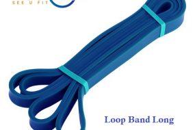 Long Loop Band Light